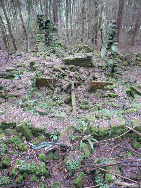 Cocking Tor - Woodland Ruin