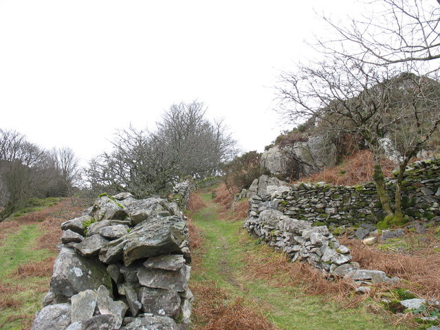 The Fron Goediog to Clwt-y-Bont path