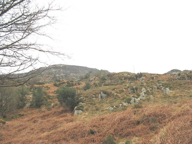 Grade V land above Rhianfa