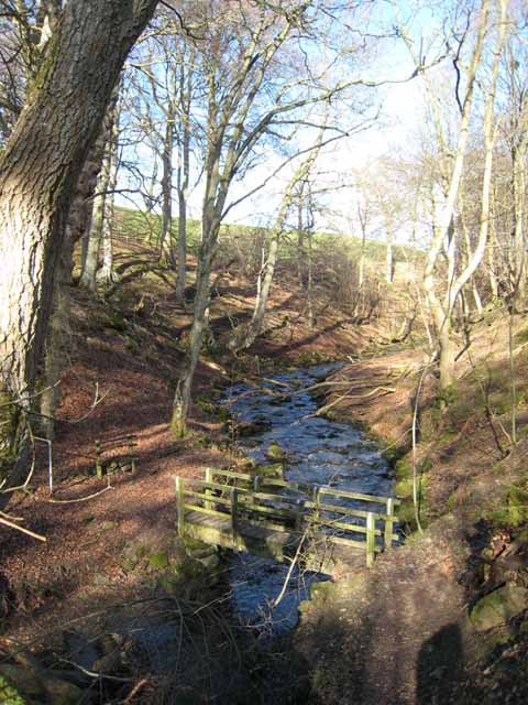Footbridge on Shittlehope Burn