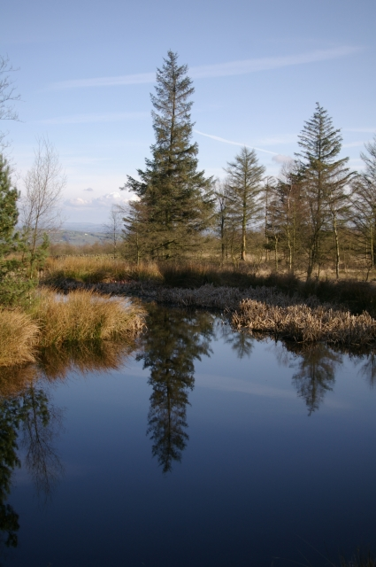 Tarn at Beacon Fell