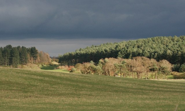 Darcliff Hill