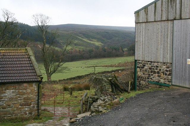 Black Beck Dale From Baysdale Farm