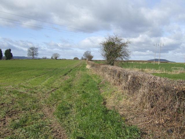 Footpath to Swinmoor