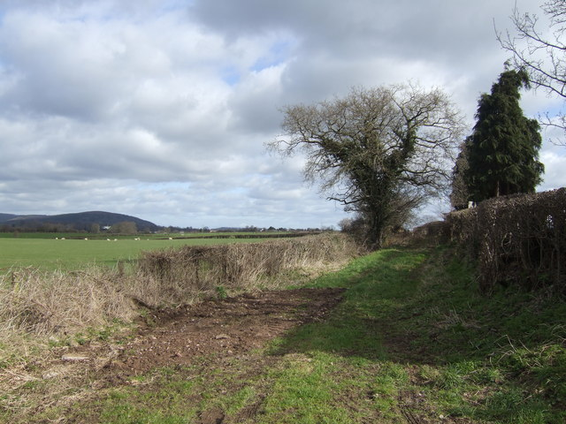 The other end of the lane