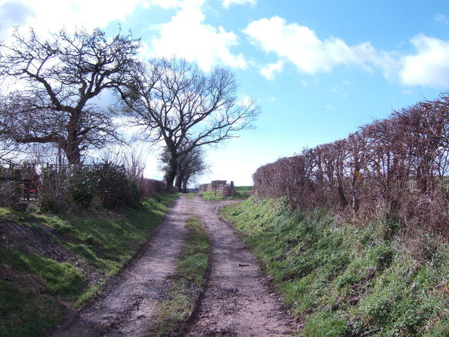 Bridleway to Preston-on-Wye