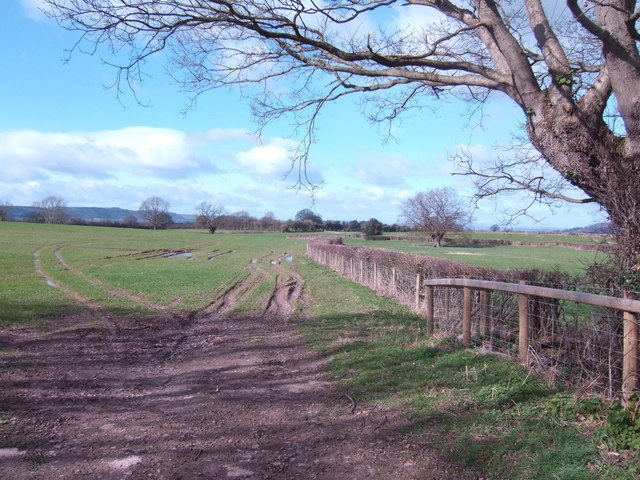 Footpath to The Bage