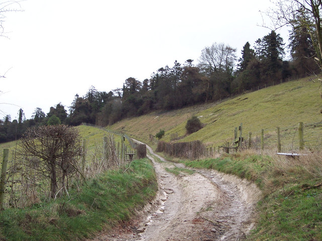Bridleway to Whiteparish