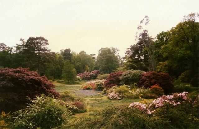 The Gardens at Auchnacloich