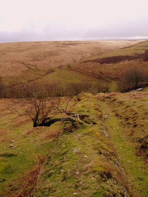 Field boundary looking South from Badgworthy Lees