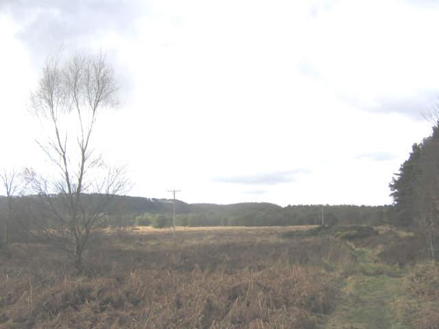Stony Moor