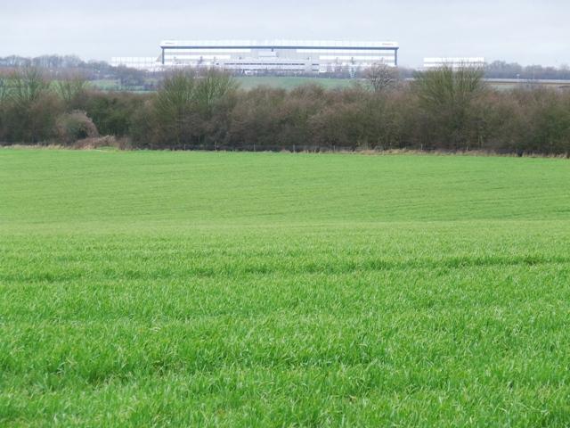 Field at Hatfield Park