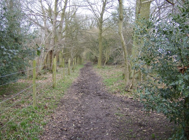 Bridleway near Highland Wood