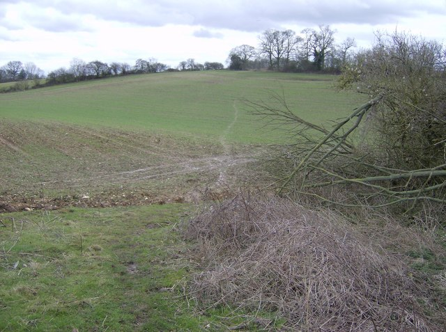 Footpath near Trench Green
