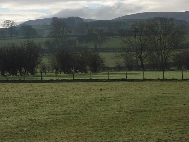 Pastures, Caldbeck