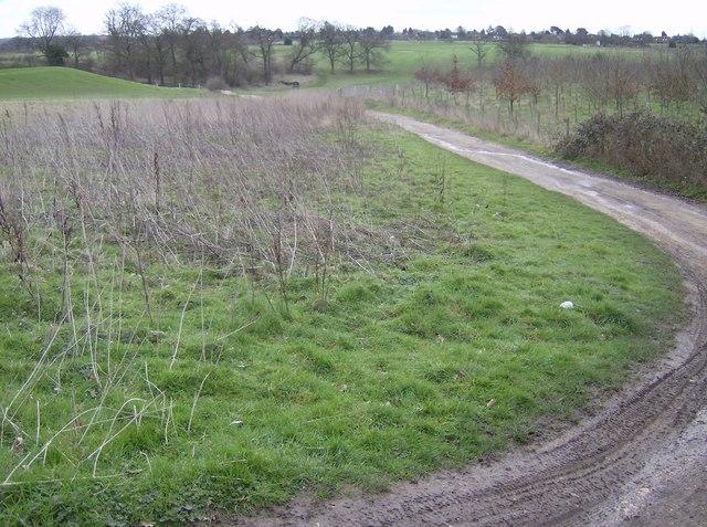 Towards the golf course