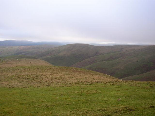 Grazing land at Trows Law