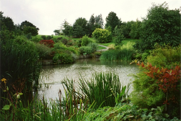 Pond at Hillier Gardens,Hants