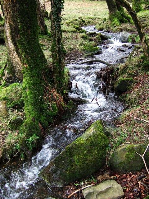 Stream near Okehampton Park
