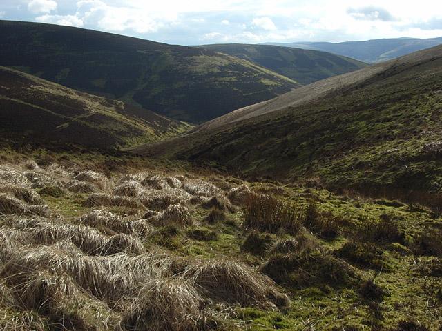 Valley below Mellion Muir