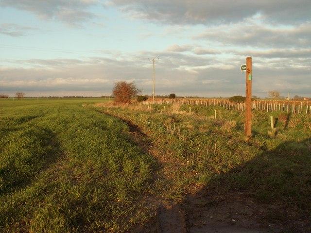 Footpath by Yew Tree Farm