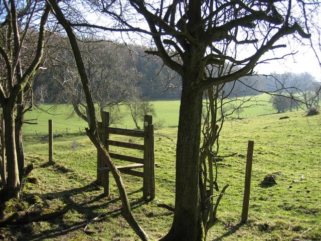 Stile and Limestone Pasture