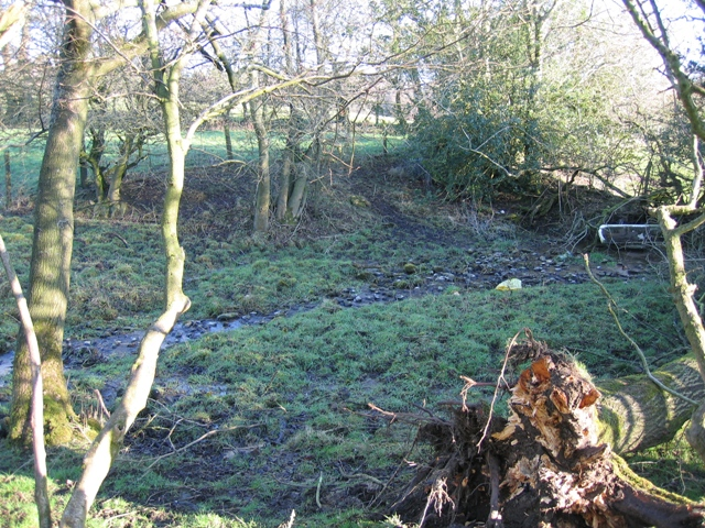 The Clwydian Way and a Spring