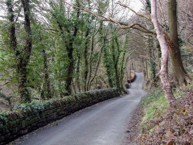 Sutcliffe Wood Lane, Hove Edge