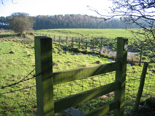 Stile and Spring on the Clwydian Way