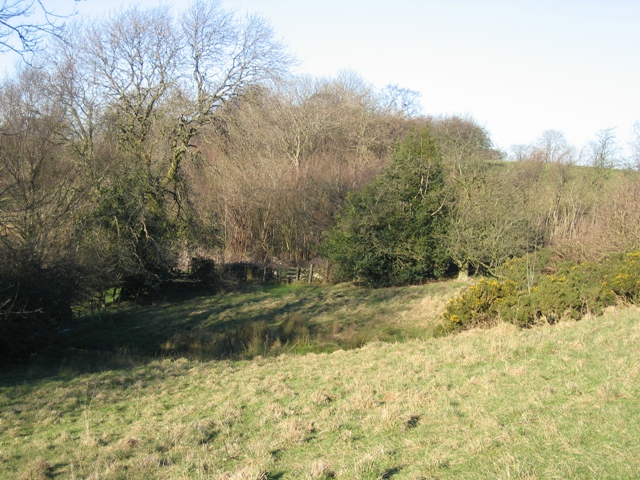 A Spring on the Clwydian Way
