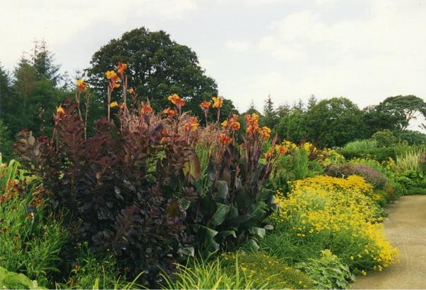Herbaceous border at Rosemoor Garden, Devon