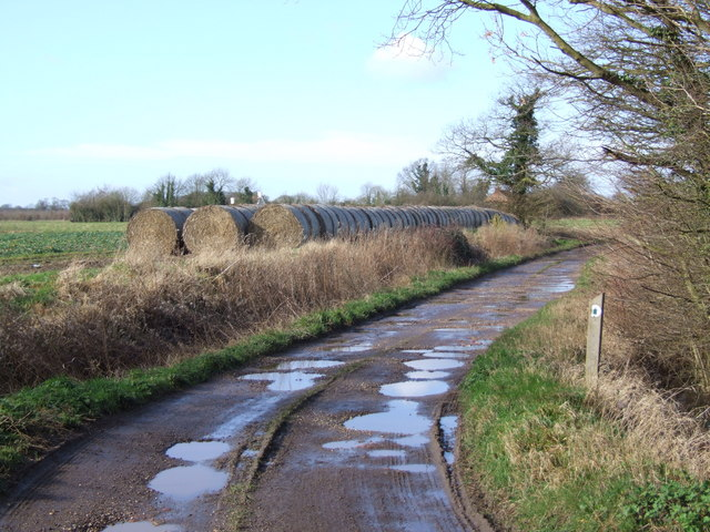 Track and Straw Bales Leading to Penny's Green, Wreningham