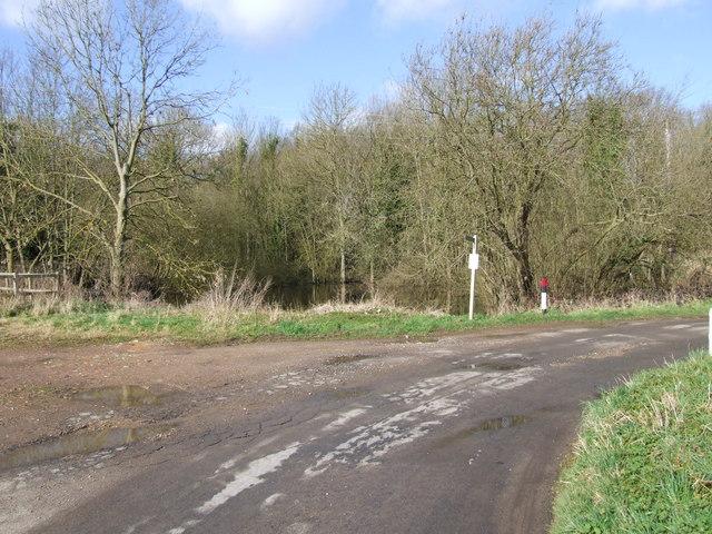 Pond near Mergate Hall, Bracon Ash