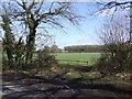 TM1998 : Gate and Field Scene by Ian Robertson