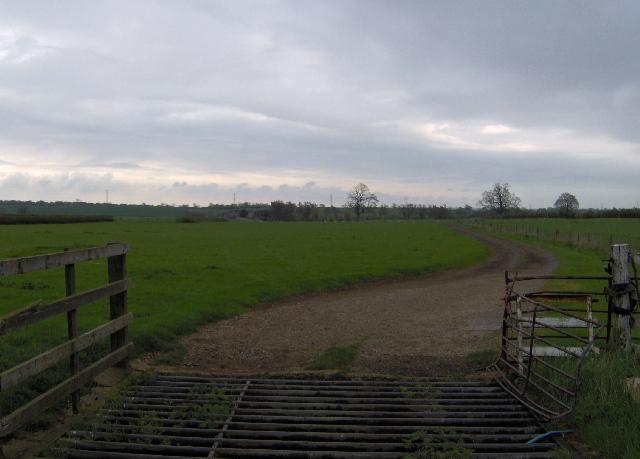 Cattle grid, near Lillingstone Dayrell