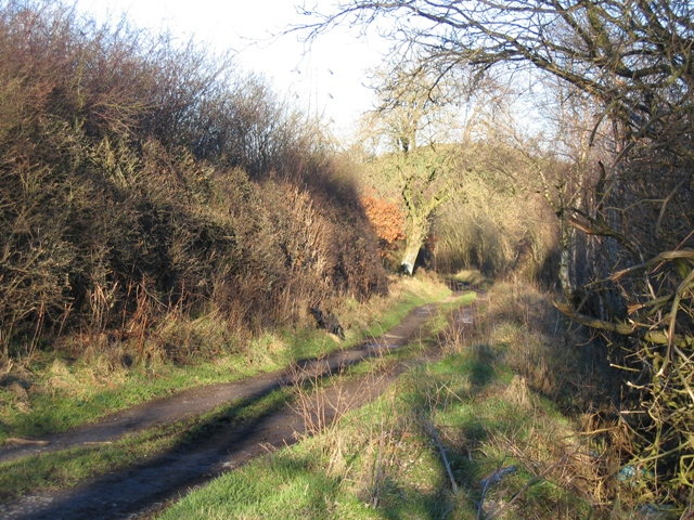 Bridleway to Graianrhyd #2