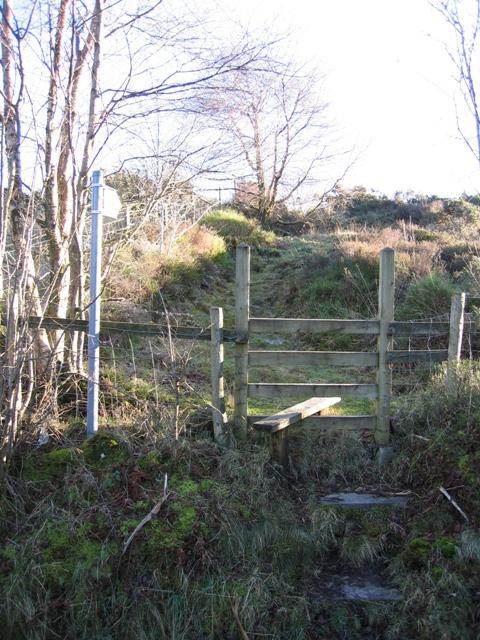 Stile and Footpath to Llyn Cyfynwy