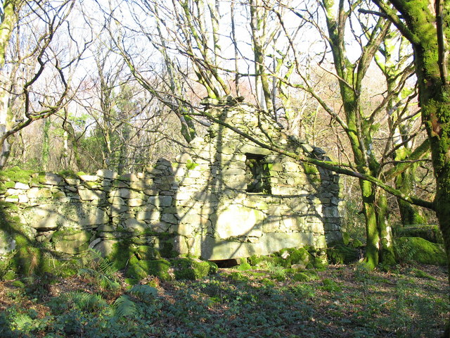 Abandoned farmstead at Cwm Derwen