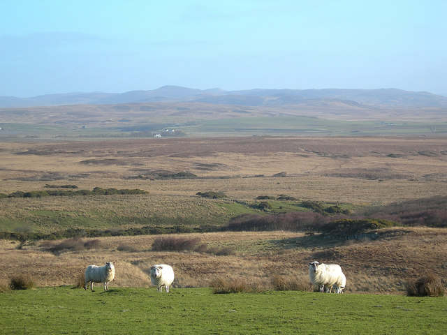 Field and Moor