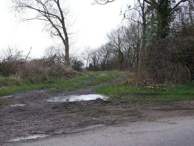 Track leading to Randall's Farm