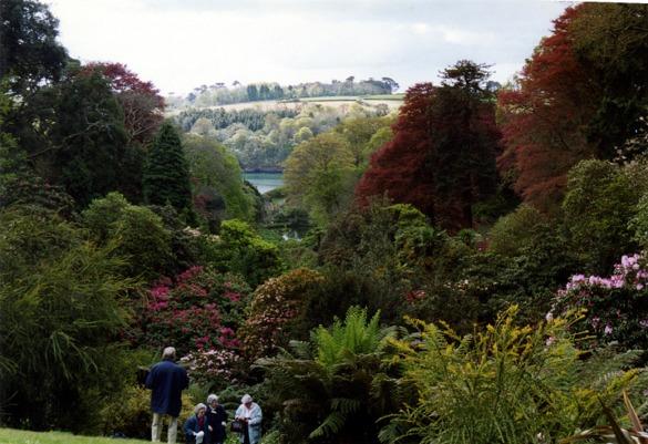 Trebah Garden looking towards Helford River