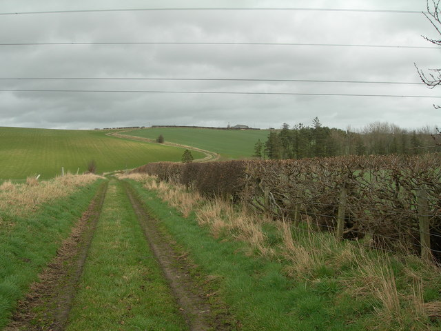 Track leading to Marldown
