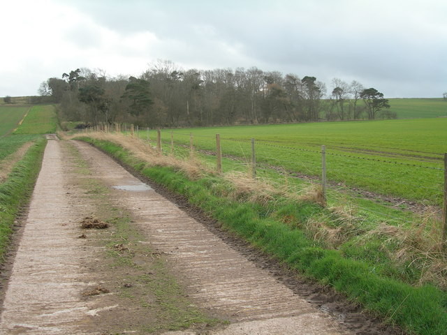 Farm road to Moneylaws Covert