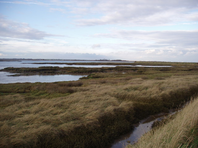 Salt marsh near Kirby-Le-Soken Quay