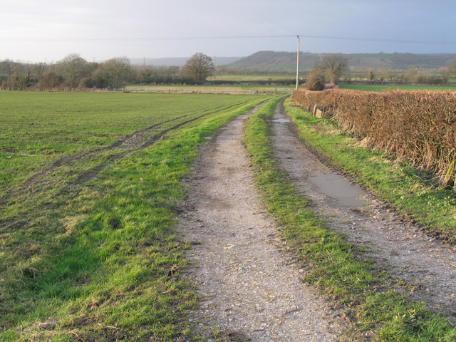 View towards Worminster and Mendip Hills