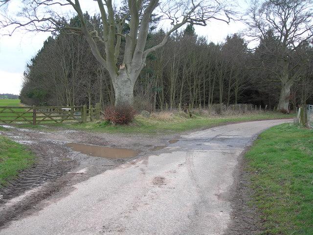 Westmoor Plantation
