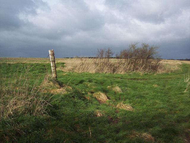 Bridleway junction, Gurston Down