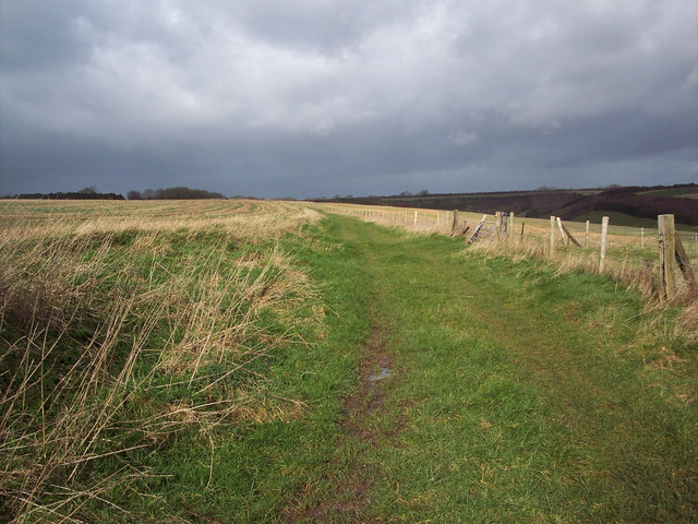 Bridleway across Gurston Down