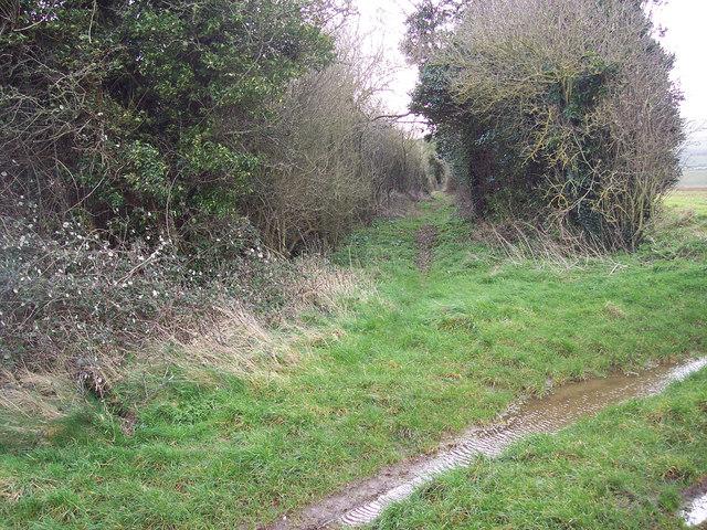 Bridleway to High Lane, Broad Chalke