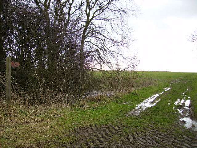 Bridleway going from near Howsham to Scrayingham